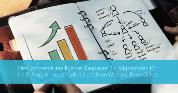 Commerce Intelligence Blaupause Blog DE
