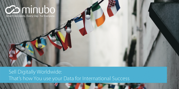 Whitepaper: Using Data for international Success