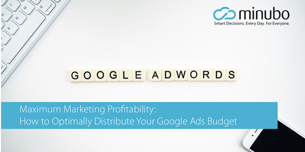 Whitepaper: Maximum Marketing Profitability with Google Ads